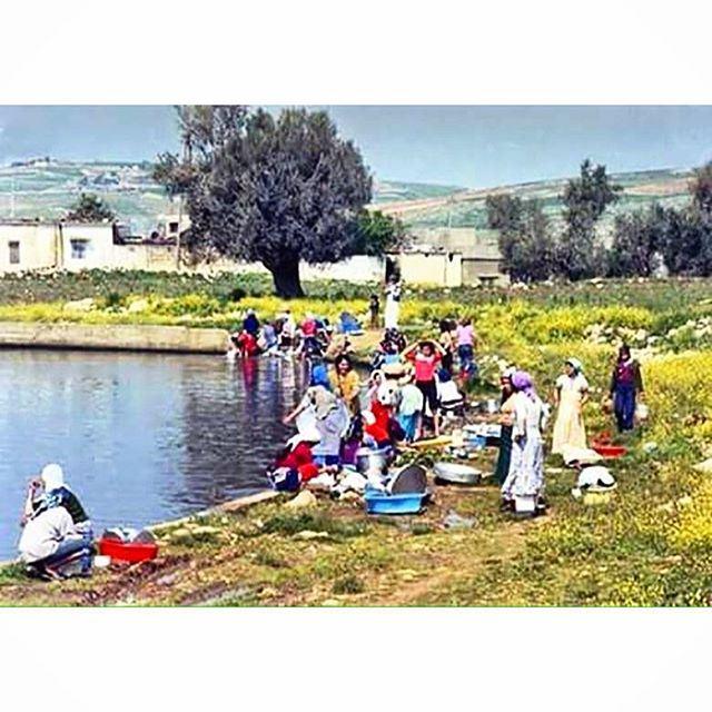 شقرا ، جنوب لبنان عام ١٩٨٢ ،