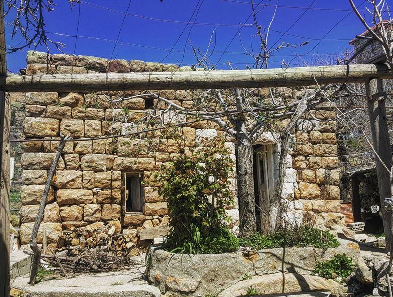 من شاء أن يعرف الطبيعة فليعرف نفسه أولا ومن أراد أن يكون سيد الطبيعة فليكن (Beskinta, Mont-Liban, Lebanon)