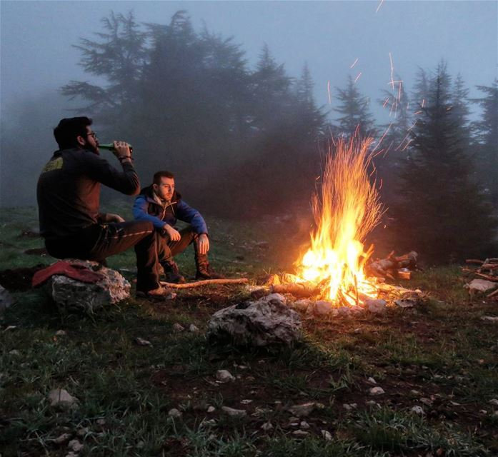 Happy Hour 🔥 fire drink friends nature outdoors camp fog trees ...