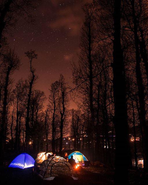 🌌⛺Camp.Explore.Dream.Discover.⛺🌌.... sunday spring forest camp... (Fnaydek Akkar)
