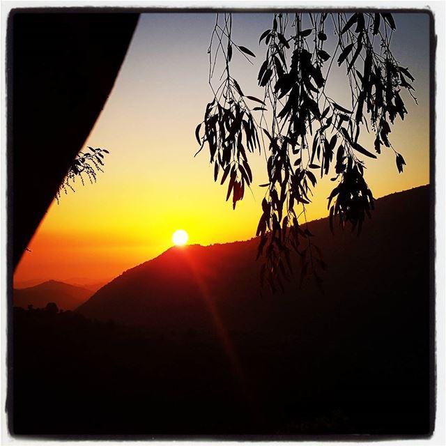 Beautiful sunset in qattine next to qaitoule. Standing in the middle of... (Qaïtoûlé, Al Janub, Lebanon)