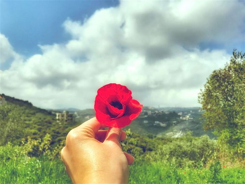 Relax..breathe, and just live❤️... ( redpoppy redpoppyseries my... (El-Kour, Liban-Nord, Lebanon)