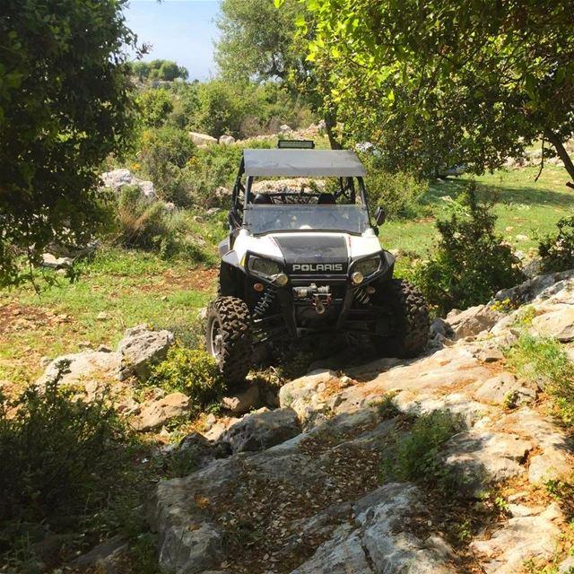 Spending the day in Nature 🌿@oliver_nakhle polarislebanon cruiserblack...