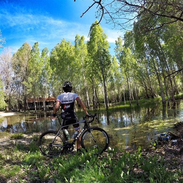 Adopt the pace of nature. Her secret is patience. 🍃. mikesport gopro5 ...
