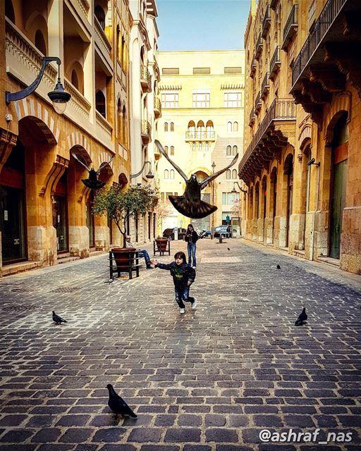 هرمت فردّي نجوم الطفولةحتى أشارك صغار العصافيردرب الرجوع لعشّ انتظاركيا... (Beirut, Lebanon)
