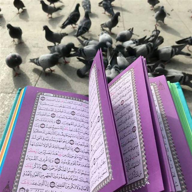 بمناسبة اقتراب شهر رمضان المبارك🕋🕋🕋 يتوفر لدينا المصحف الملون باحجام مخت
