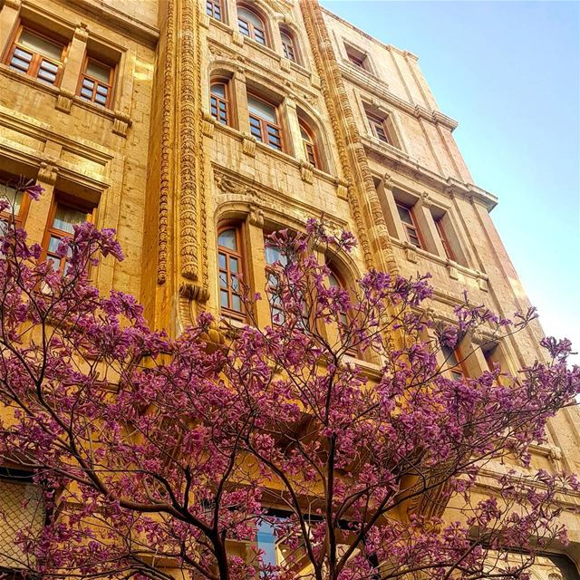 Beirut spring building architecture lebanon travel liban beyrouth...