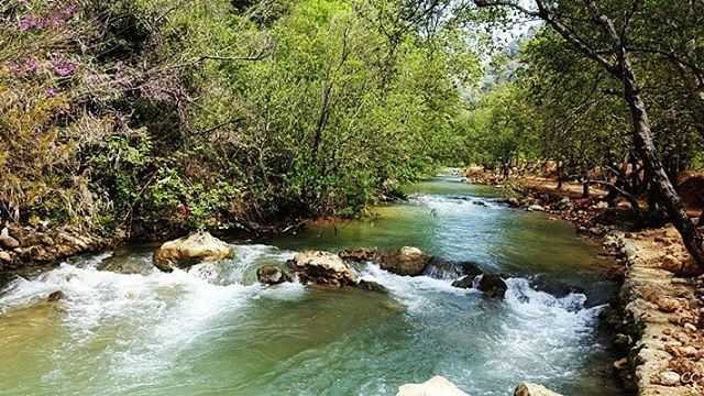 lebanon nature river chouf livelovelebanon lebanonspotlights ...