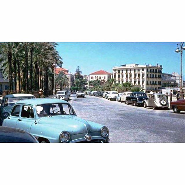 صباح الخير من بيروت عام ١٩٥٥،