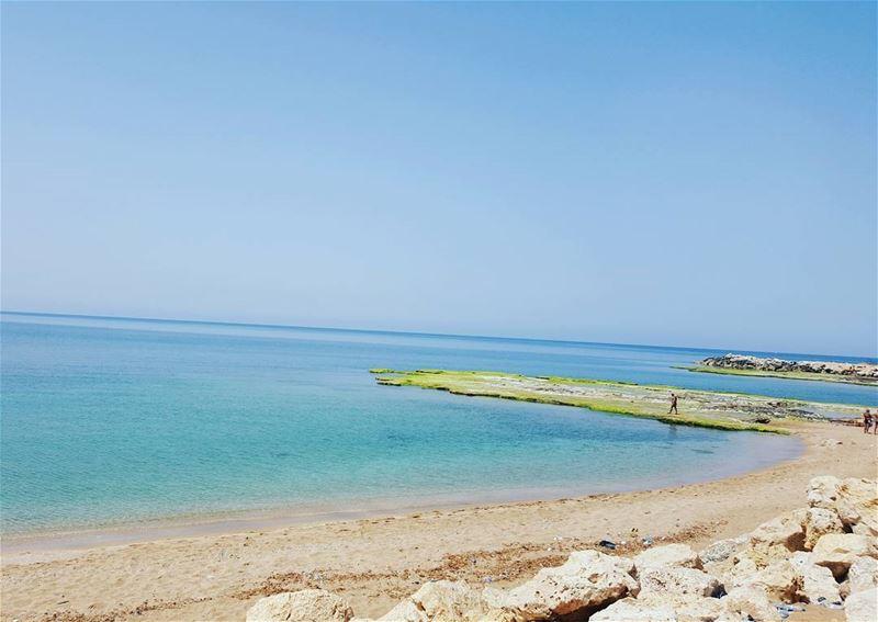 mina sunnyday clean and ... (Corniche El Mina Tripoli)