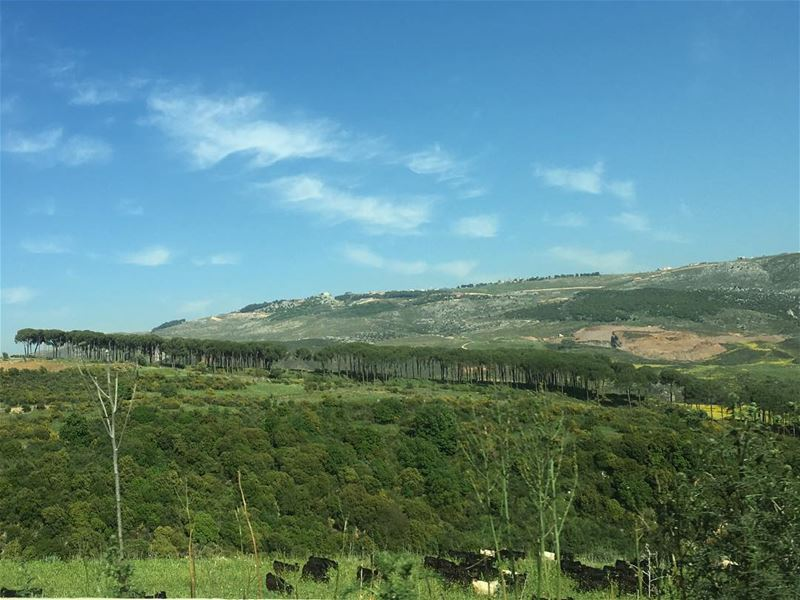 The beautiful lebanon khardali area lebanesenature lebanonnature ... (Khardali)