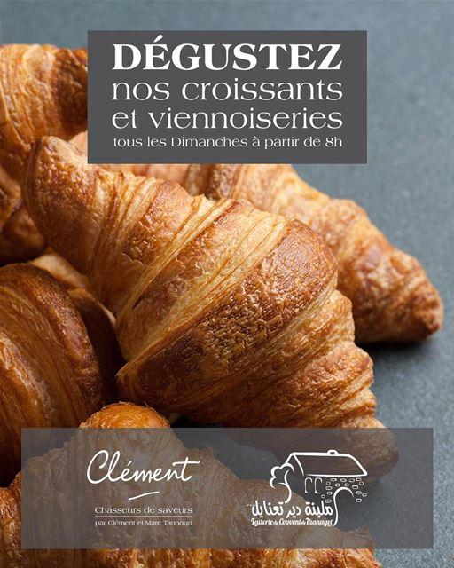 Dégustez nos croissants et viennoiseries tous les Dimanches à partir de 8h... (Deïr Taanâyel, Béqaa, Lebanon)