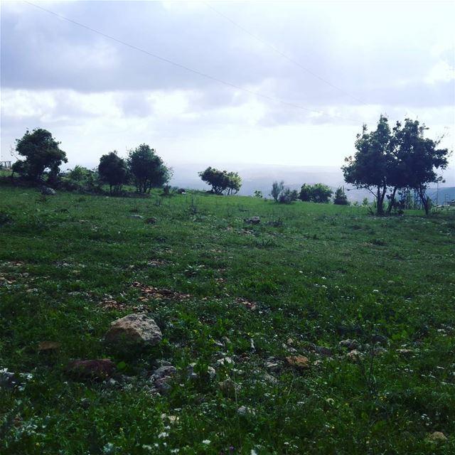 livelovenature livelovelebanon ... (الريحان - جنوب لبنان)