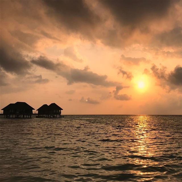 Sunsets are the proof that endings can be beautiful too❤ insta_lebanon... (Indian/Maldives)