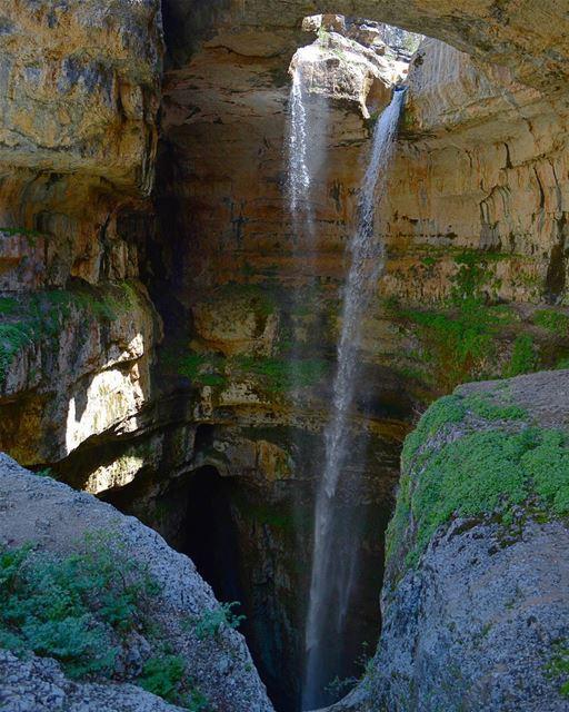 Just observe. loves_lebanon super_lebanon ig_lebanon lebanonbyalocal... (Tannourine - Balou' Balaa)