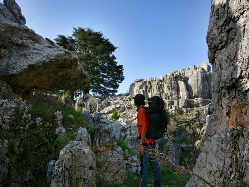 Life is about courage and going into the unknown. 🗻🚶🌲 thenorthface ... (Hiking Lebanon)