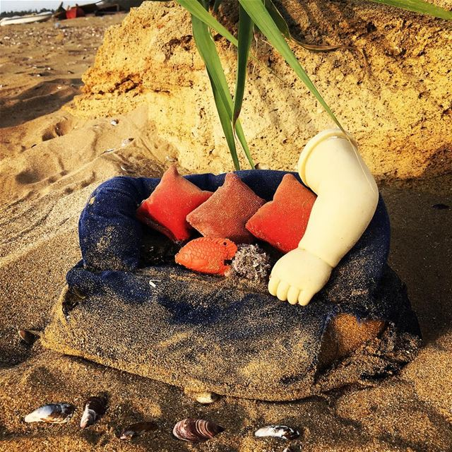 Sunday by the sea surrealism beach beachlife sofa nature fish ... (Shabriha, Al Janub, Lebanon)
