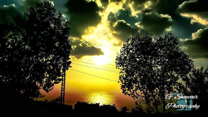A splendid sunset scene behind the clouds 🌞⛅______🔴⚪⚪🌲⚪⚪🔴_______... (مزرعة يشوع)