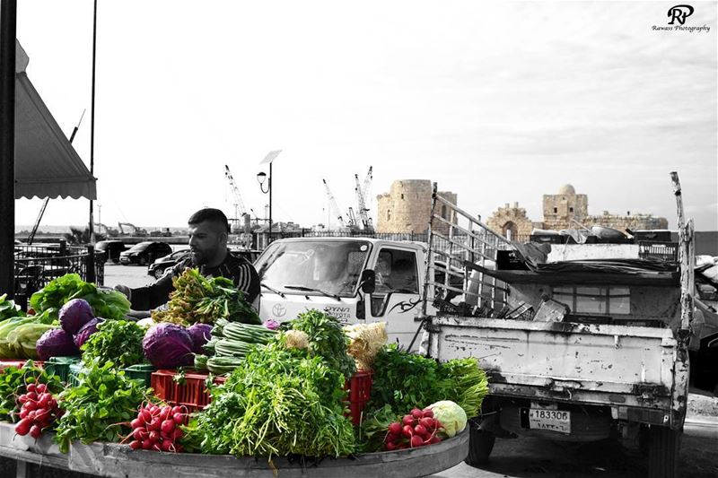 """ After visiting the Castle , you can get your fresh vegetables from this... (Saïda, Al Janub, Lebanon)"