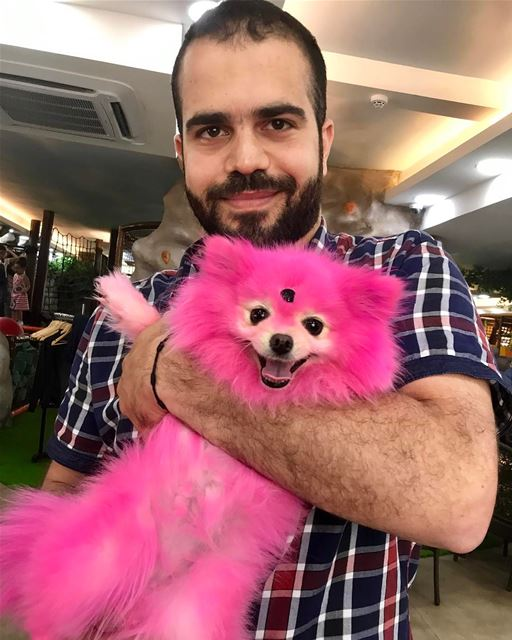 Say hi for our pinky poutik 👻👻👻 ⛔️⛔️please pets lovers dont worry about... (Dawhet El Hoss)