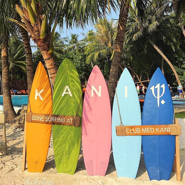 I will be back😥 insta_lebanon whatsuplebanon lebanonspotlights... (Kani - Maldives !)