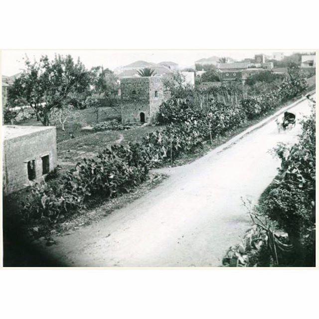 بيروت شارع الحمرا عام ١٩٠٠ ،