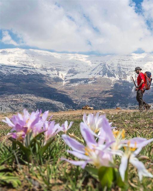 Tenham uma ótima semana inspirada por esta inesquecível paisagem do Monte... (Mount Sannine)