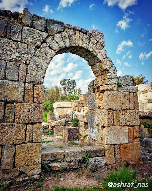 إذهب عميقاً في دميوإذهب عميقاً في الطحين...لنصاب بالوطن البسيطوبإحتمال ا (Roman ruins in Tyre)