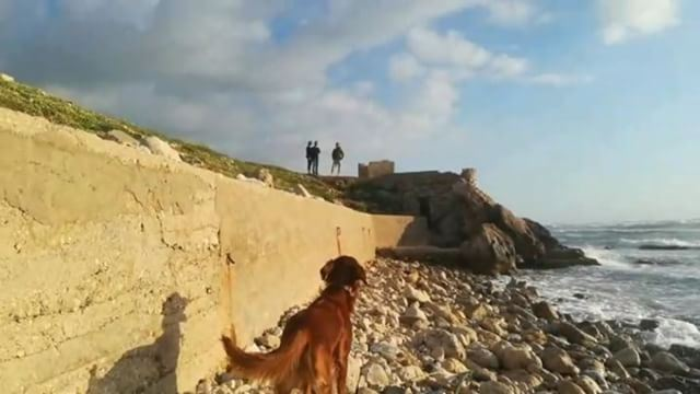 Beera scouts the way and leads us to the rocky shoreline camouflaged in...