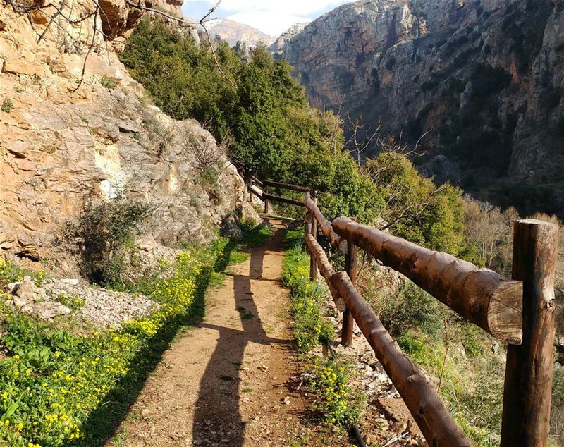 This is all I'm thinking about today 🏔️🍃☀️🌿 What's on your mind? (Kadisha Valley)