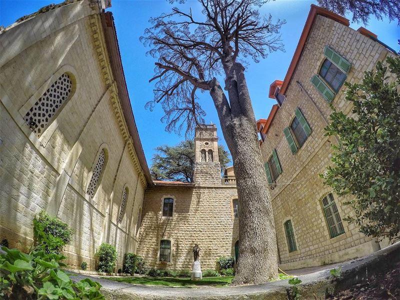 Monastery of Taanayel ⛪️....... monastery church taanayel ... (Deïr Taanâyel, Béqaa, Lebanon)