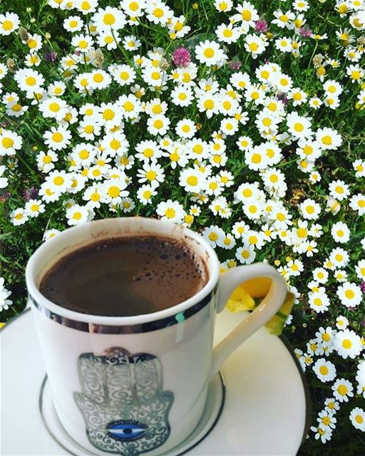بين الحب و السعادة انت قهوتي.. turkkahvesi turkishcoffee kahve ...