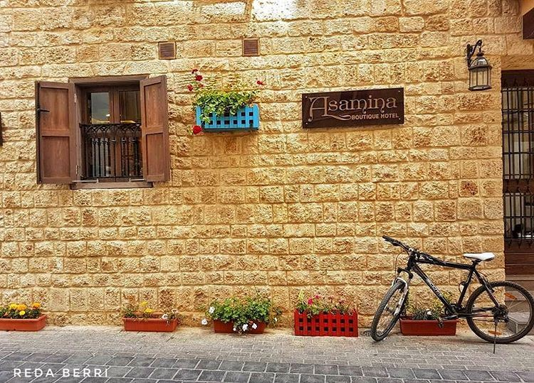 Beauty is everywhere tyre lebanon livelovetyre livelovesouth ... (Tyre, Lebanon)