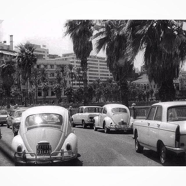 بيروت الزيتونة عام ١٩٦٩ ،