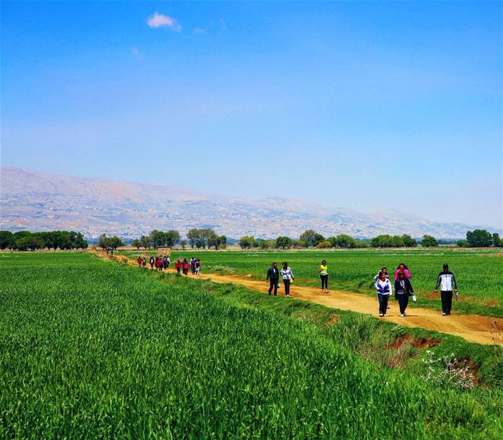 hiking explorelebanon picoftheday livelovelebanon naturephotography ... (`Ammiq, Béqaa, Lebanon)