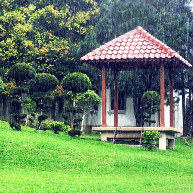 That Gazebo, Don't! Just enjoy walking under the rain instatraveling ... (Penang Botanic Gardens)