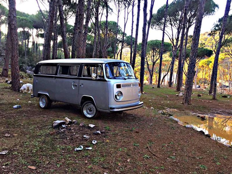 Out for a ride in the woods 🏞 Aircooledmafialb aircooled_society vwlife... (Balaa, Tannourine)