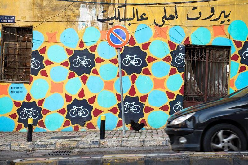 W Europie mozna spotkac na ulicy kota albo psa, w Libanie kure 🐓🇱🇧🙌🏼 ... (Beirut, Lebanon)