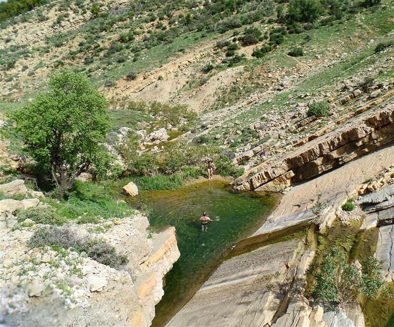 The Best Natural Swimming Pool Ever 🌳🏊🏻🍃💚About Yesterday, The LMT... (Niha Al Chouf)