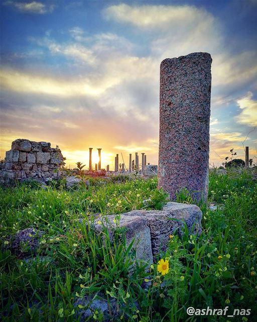 انت وانا ياما نبقىنوقف على حدود السهل...وعلى خط السما الزرقامرسومة طريق... (Roman ruins in Tyre)