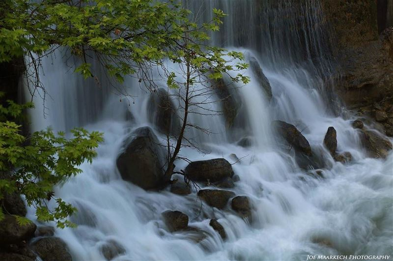 There is a hidden message in every waterfall. It says, if you are flexible,