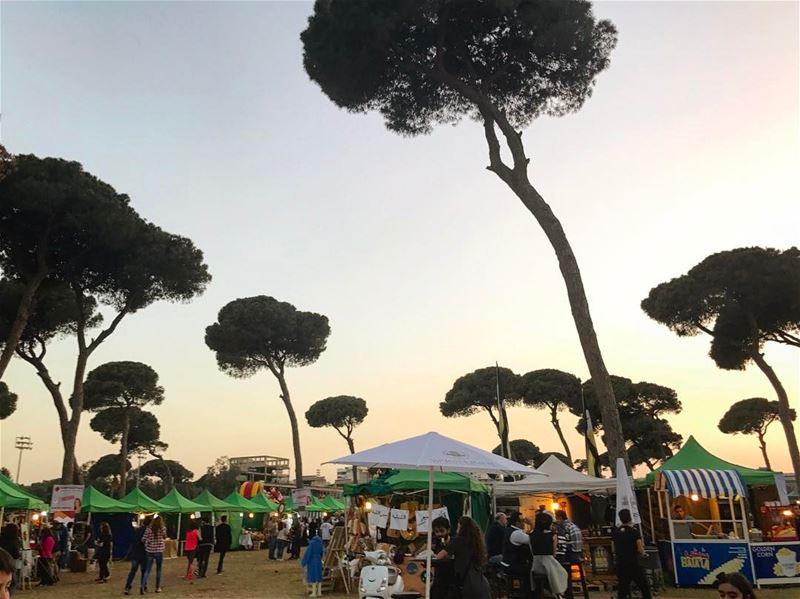 Sunset👌🏻🌅 (Hippodrome Du Parc De Beyrouth)