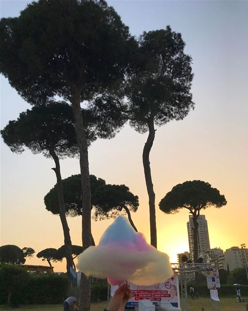 Cotton candy with this amazing view🍡🌅🌳 (Hippodrome Du Parc De Beyrouth)