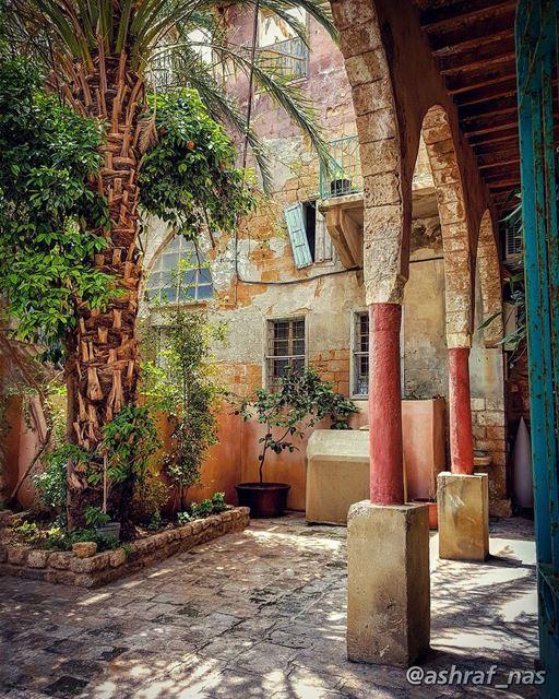 تعي نقعد بالفيمش لحدا هالفيحبيني وفكري شوي...بلا ولا شيوحدك بلا ولا شي. (Tyre, Lebanon)