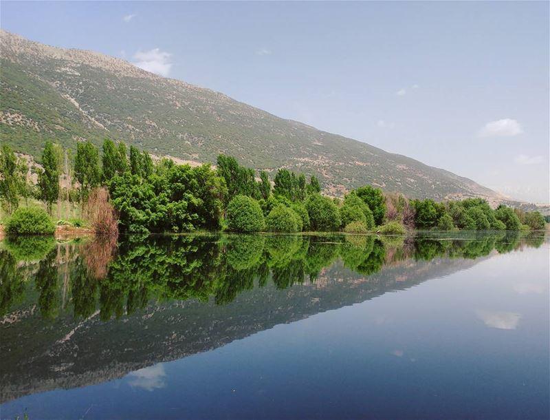 The beautiful lands 💚 (West Bekaa)