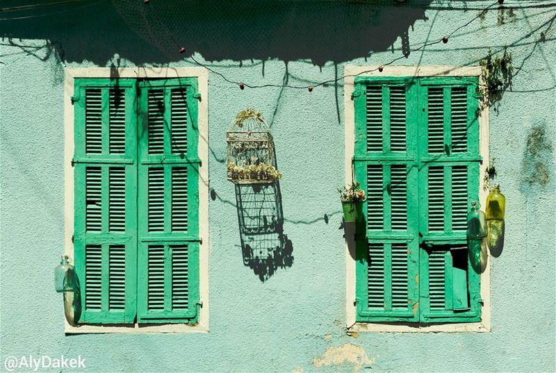 Wall EyEs 🏠 🐦 aqua old windows houses tyre lebanon lebanonbylocal... (Tyre, Lebanon)