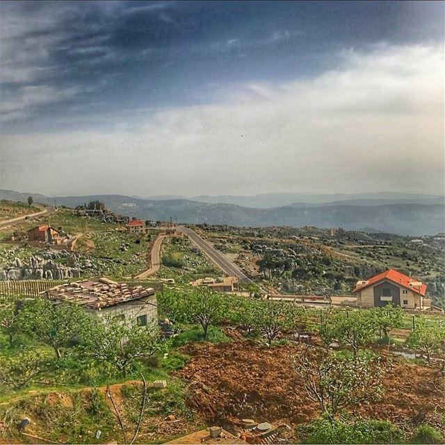 Just logged OFF 🦎🍂🦊 - .... lebanon summertime lifestyleblogger l4f... (Zaarour)
