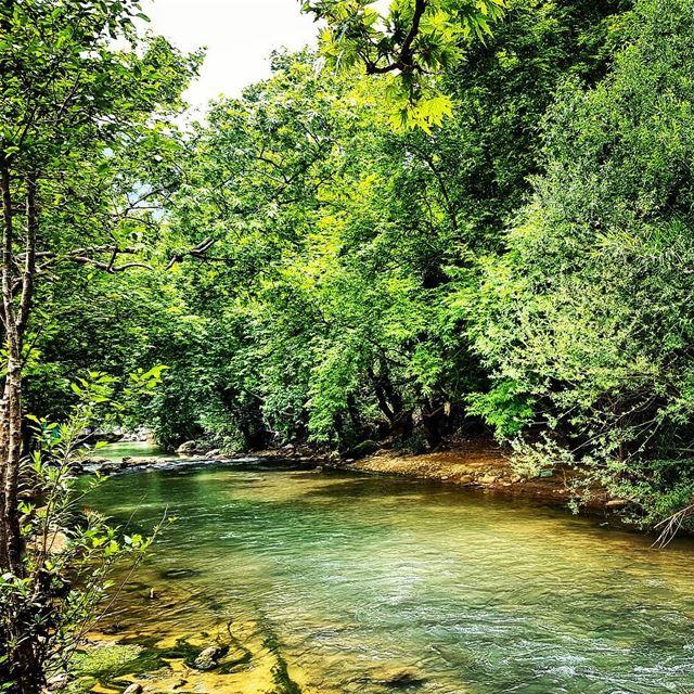 It's Spring! lebanon spring damour nature river heaven ... (Damour, Lebanon)