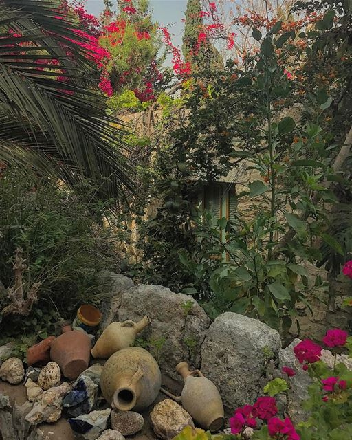 Good morning dear followers🌺• whatsuplebanon insta_lebanon ... (Zouk Mosbeh)