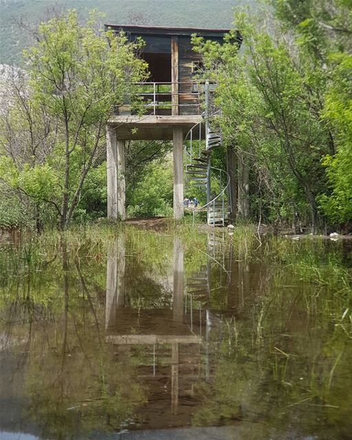 ~... reflection reflectiongram nature naturelover naturegram ... (`Ammiq, Béqaa, Lebanon)